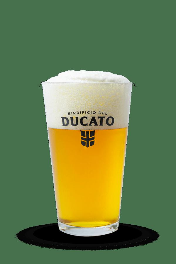 PINTA-DUCATO-bicchiere