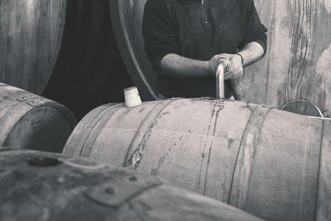 fermentazioni-miste
